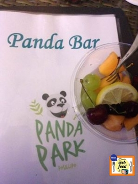 pandapark1