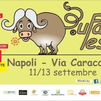 Cosa fare nel week end? Bufala Fest!
